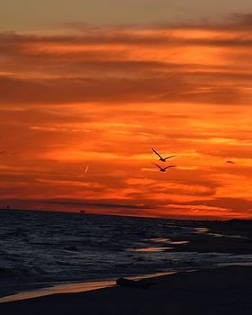 Gulf Sunset by Sue Houston