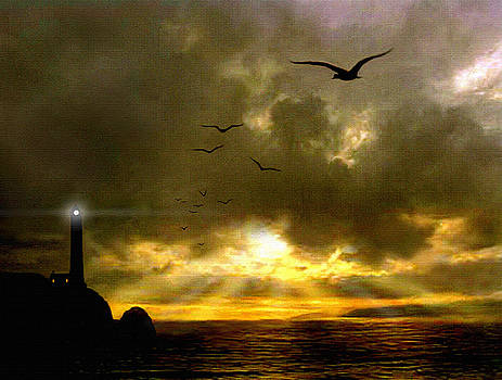 Gull Flight by Robert Foster