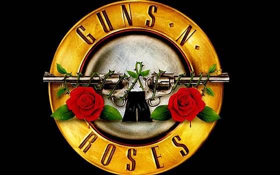 Guns N Roses by Sue Rosen