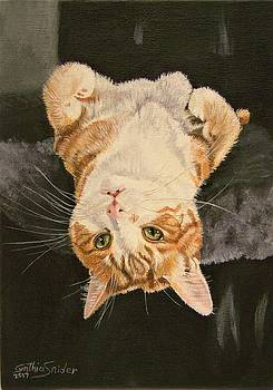 Guss The Cat by Cynthia Snider