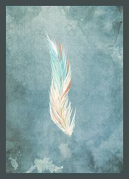 Gypsy Feather by Tim Ford