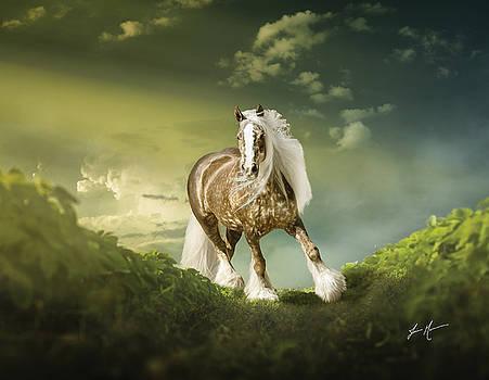 Gypsy Glory by Jamie Mammano