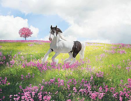 Gypsy Springtime by Jamie Mammano