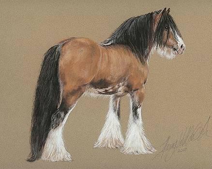 Terry Kirkland Cook - Gypsy Stallion