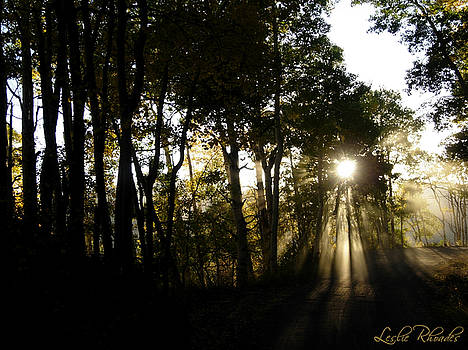 Leslie Rhoades - Hagermans Light