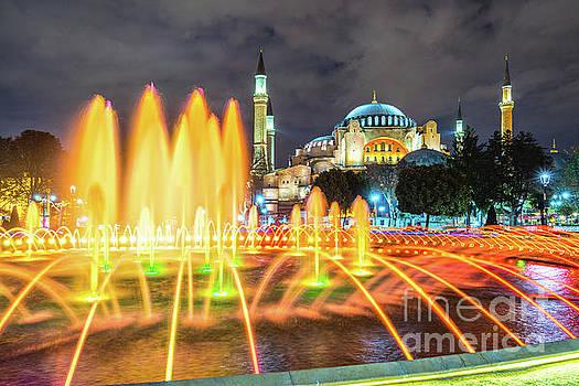 Hagia Sophia mosque - Istanbul - Turkey by Luciano Mortula