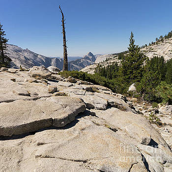 Wingsdomain Art and Photography - Half Dome and Yosemite Valley From Olmsted Point Tioga Pass Yosemite California dsc04242sq
