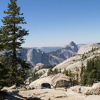 Wingsdomain Art and Photography - Half Dome and Yosemite Valley From Olmsted Point Tioga Pass Yosemite California dsc04245sq