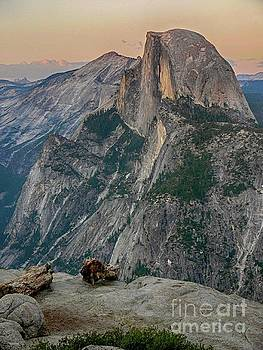 Half Dome at Sunset in Glacier Point Yosemite National Park by Rincon Road Photography By Ben Petersen