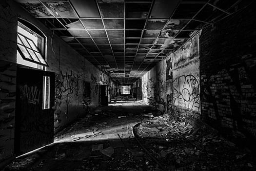 Hall of Voices by CJ Schmit