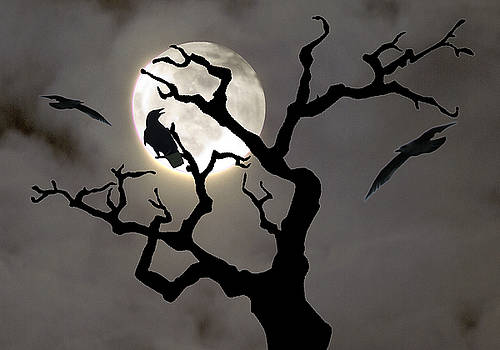 Halloween by Jim Wright