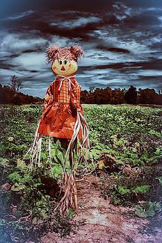 Halloween Scarecrow  by Debra Forand