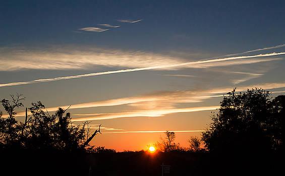 Halloween Sunrise 21 by Carlee Ojeda