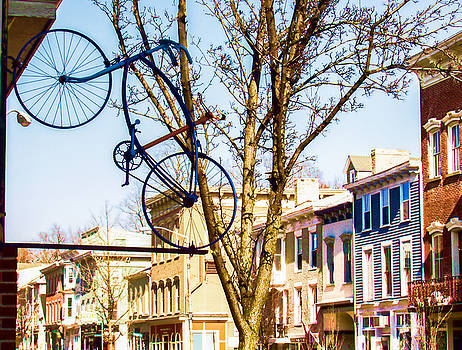 Hanging Bicycle in Catskill NY by Nancy de Flon