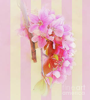 Hanging Blossoms by Elaine Manley
