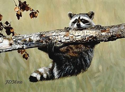 Hanging On by Janet Moss