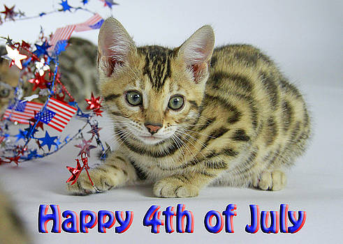 Happy 4th of July by Shoal Hollingsworth
