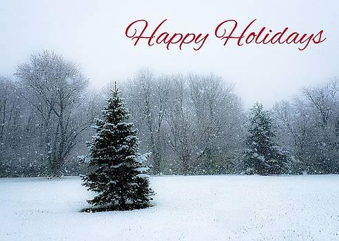 Happy Holidays card by Dan McCafferty