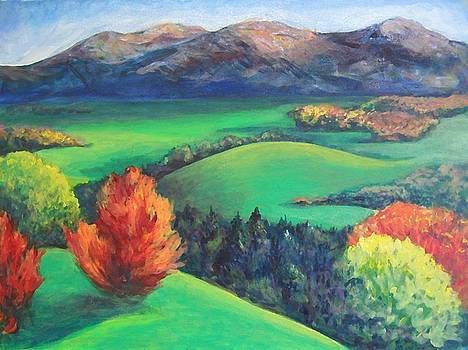 Happy Valley by Lyn Vic