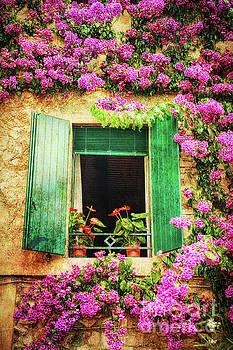 Happy Window by George Oze