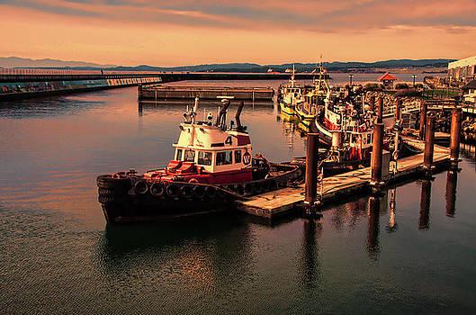 Marilyn Wilson - Harbour Sunset