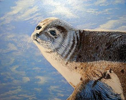 Harbout seal P.E.I. by Rick Gallant