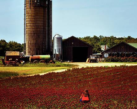 HARCO Blooms by Robert McCubbin