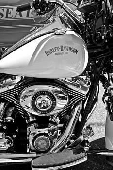 Harley Cop by Aidan Minter