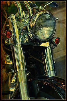 Harley by La Dolce Vita