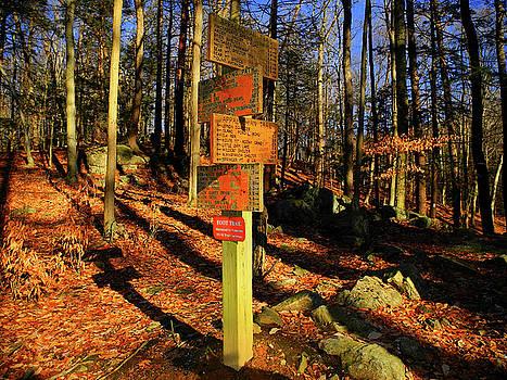 Harriman State Park Trail Sign by Raymond Salani III