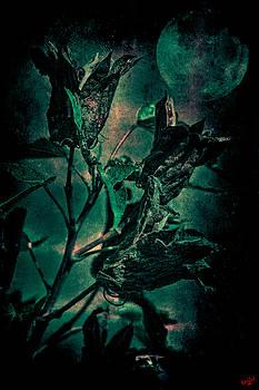 Chris Lord - Harvest Moon