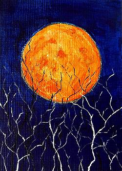 Harvest Moon by Sabrina Zbasnik