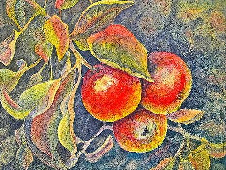 Harvest Time by Carolyn Rosenberger