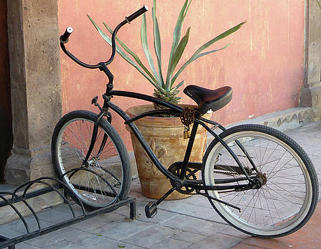 Have wheels...will travel by Anne Mott