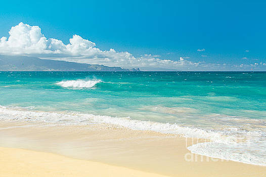 Hawaii Beach Treasures by Sharon Mau