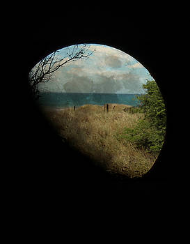 Hawaii Moon by Amanda Eberly-Kudamik