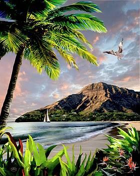 Hawaii Sunset by Ron Chambers