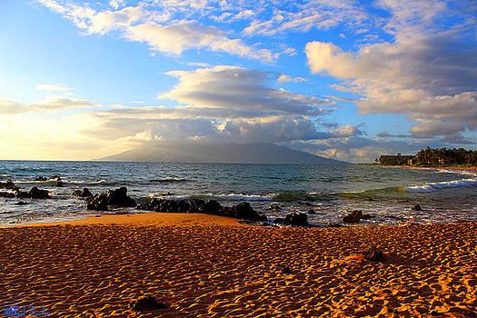 Hawaiian Beach of Maui by Michael Rucker