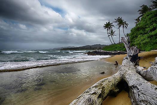 Hawaiian Beach on Kauai by Steven Michael