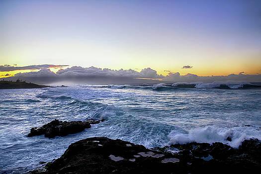 Hawaiian Big Waves by Steven Michael