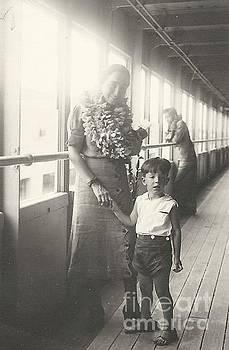 Hawaiian Cruise by Michael Krek