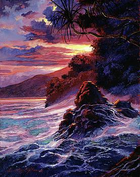 Hawaiian Sunset - Kauai by David Lloyd Glover