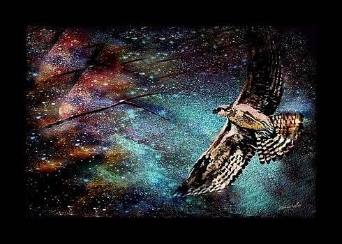 Hawk at Night by YoMamaBird Rhonda