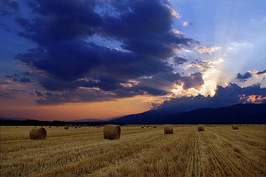Hay Bale Field At Sunset by Plamen Petkov