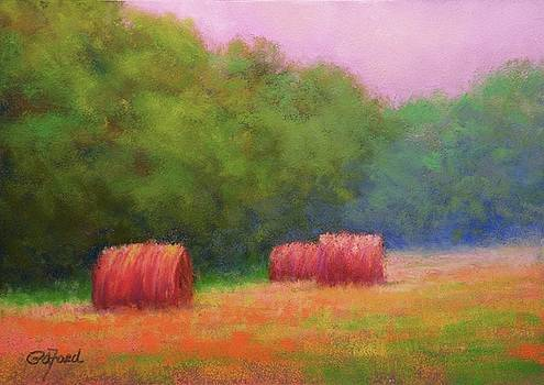 Hay Bales and Thunder by Paula Ann Ford