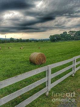 Hay Rolls in July by Sean Cupp