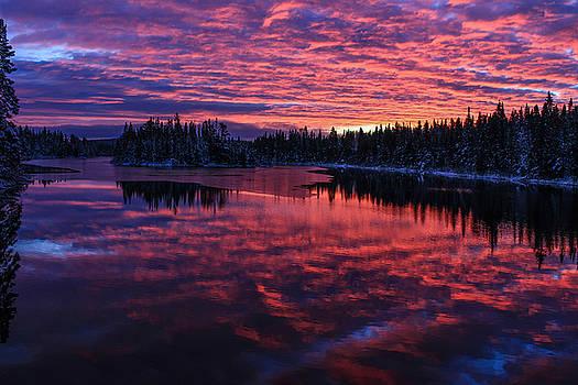 Hazelwood Sunrise by Tingy Wende