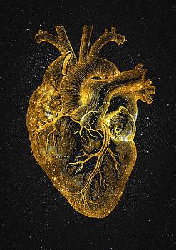 Heart Nebula by Taylan Apukovska