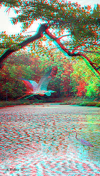 Heaven For Herons - Use Red/Cyan 3D glasses by Brian Wallace