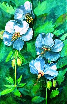 Heavenly Hibiscus by Jane Ricker